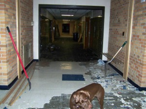 This is the last section to rip up before we head into classrooms.  In the classrooms the flooring is partially tile and the other half, funky old carpet.  Let's start with the tiles and work our way to the carpet.