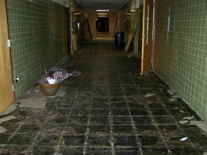 This is the end of the school house we have done nothing with yet.  Picture was taken outside the laundry room.  We have almost half of the hallway tore up at this point.