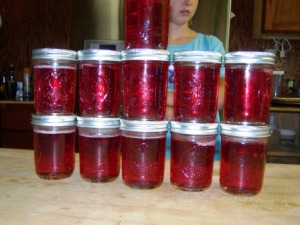 The kids & I made a double batch, ending up with 11 half pinnt jars.